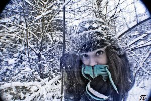 first snow by pypol