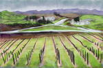 Napa Valley by mudimba