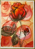 Rose on Roses ATC by unSpookyLaughter