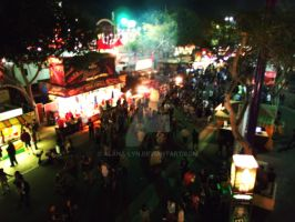 The Fair- Aerial View by Alana-Lyn