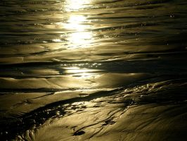 Paths in the Sand by daisysunshineyay