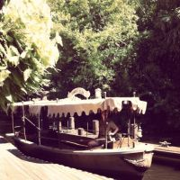 Jungle Cruise by Grumbles106