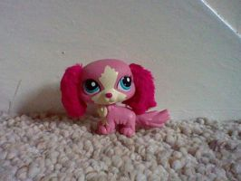 LPS Pink Fluffy-eared dog by ButchxButtercup1996