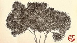 Japanese Style Tree by SamCurry