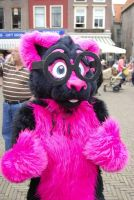 Pinky Approves ! by FurryFursuitMaker