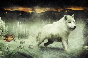 Chaos in the Realm, Winter of the Wolves by r-fl