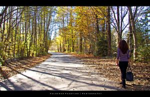 Autumn Road by Val-Faustino