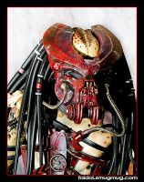 Predator - Wondercon 2009 by faidoi