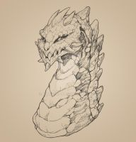 Rock Dragon bust sketch by drakoncast