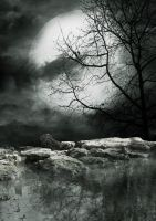 Moonlight BG 04... by the-night-bird