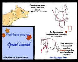 Special wolf head tutorial by Aquene-lupetta