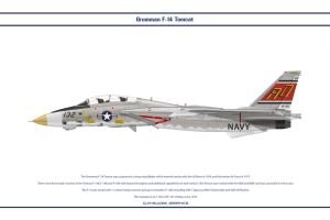 F-14A VF-101 1 by WS-Clave