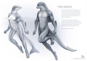 Reference Sheet - The Isegun by Nimrais