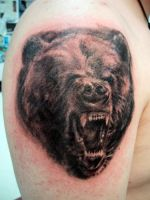 grizzled bear by scratchbilly