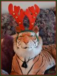 Rudolph The Red Nosed Rein...Tiger?! by Stygma