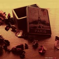 Paris in a box by unknown-dark