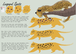 Paint Files: Leopard Spots by S-Nova