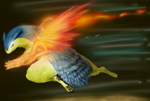 Typhlosion!!!! by Chenks-R