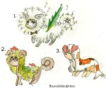 MYO Puffies Contest Entiers 1,2,3 by theaschebloodprince