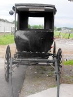 Stock: Amish Buggy by Stock-By-Michelle