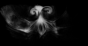 the spiders art 2 by so1what1i1am1myself