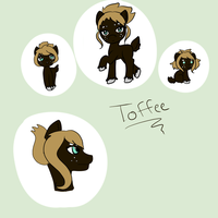 Toffee- Contest entry #2 by InuLover097