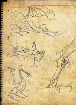 Dragons sketches by juanbauty
