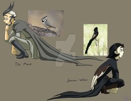 Character Designs: Birds by forte-girl7