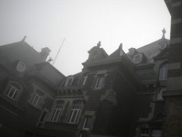 Chateau de Namur on a misty October morning 4 by Randist