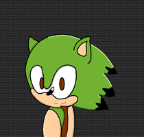 (Gift)  Cactus the Hedgehog by Tabby010