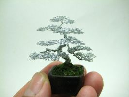 Micro Wire Bonsai tree sculpture by KenToArt