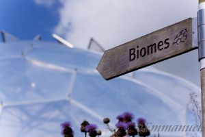 To the biomes! by oEmmanuele
