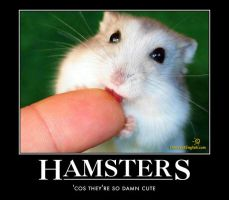 hamster motivational poster by Weirddudeguy