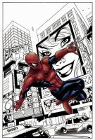 Spidey again by TheNass