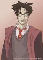 Harry Potter 2 by periwinkle-blue