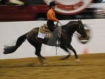 cowgirl in motion 3 by ascribesplace