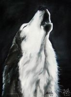 The Howl by LKE-Kola