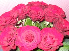 Roses after the birthday by Gallerica