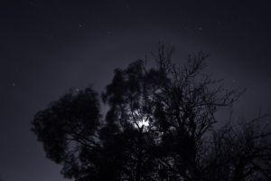 Day 152 by TakeMeToAnotherPlace