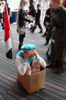 Otakuthon 09: Sealand's home by pink-blossom