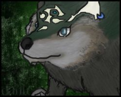 Wolf Link wants ur cookehz by Dante3o3