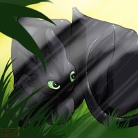 Toothless by Pooka-Spirit
