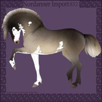 Nordanner Import 852 by s1088