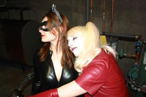 Catwoman And Harley by cosplaynut