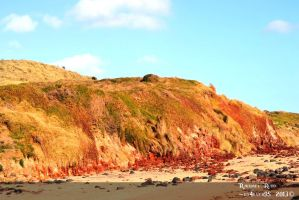Beach Mountain - Phillip Island by ily4ever95
