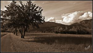 Venetian countryside 3 by Cristinaconte