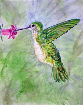 Hummingbird in Blue and Green by Melindotty