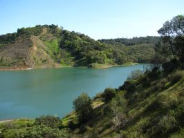 Emerald green of Lake Sonoma by Earthmagic