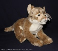 "Leosco ""Save Our Space"" Puma Plush by dapumakat"