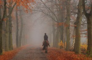 Sometimes life is like riding in the fog by Esperimenti